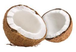 Bio-Kokosöl von Dr. Goerg gegen Herbstmilben