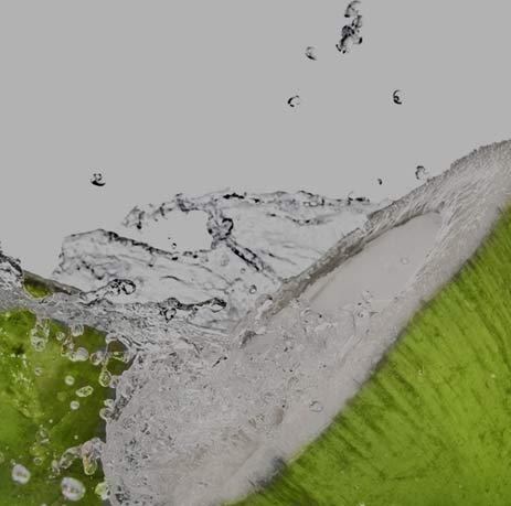 Kokoswasser - leckerer Durstlöscher