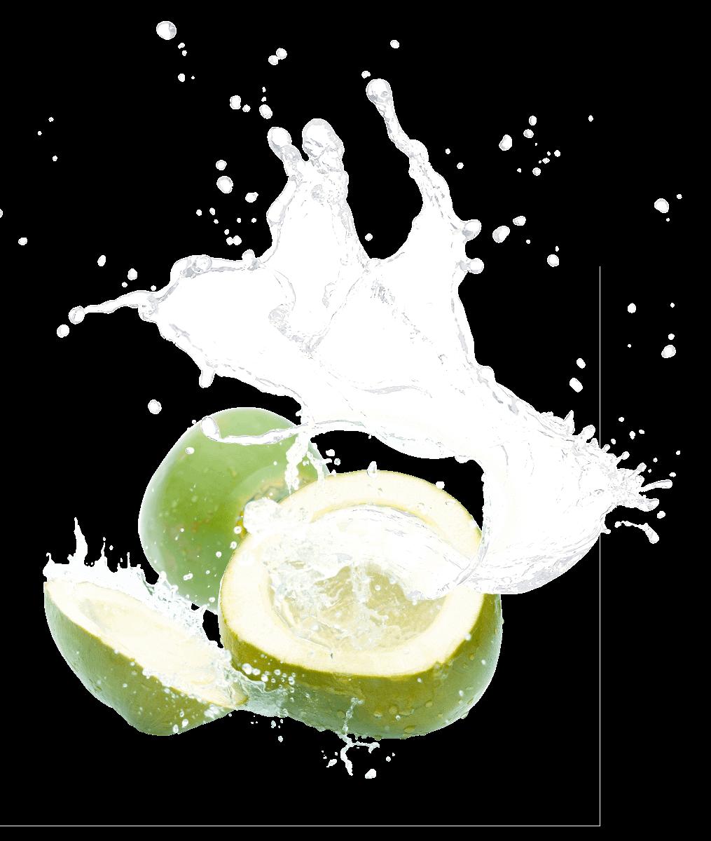 frische Kokosnuss