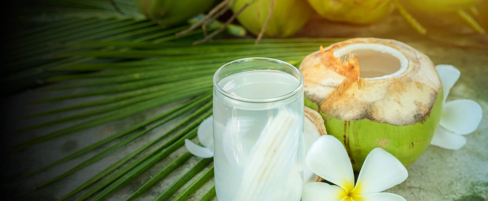 Leckerer Durstlöscher aus den Tropen