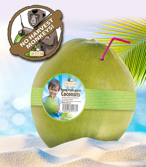 Kokosnuesse + Affen 02